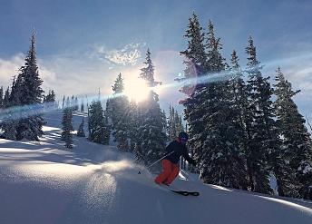 Powder skier Catherine's Area, Alta, Utah